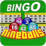 Nine Balls Video Bingo (mod) 2.08