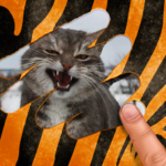 Scratch and guess the animal (mod) 9.1