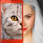 Kittens: what cat are you? prank (mod) 2.7
