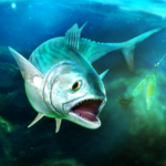 TAP SPORTS Fishing Game  8.1.1 (mod)