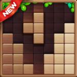 Wood Block Puzzle Game 2021 (mod)